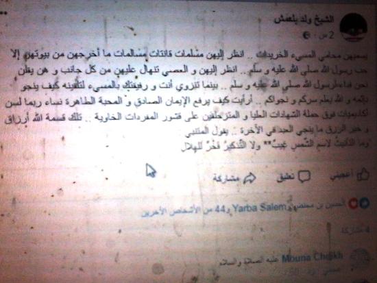 صورة من تدوينة الشيخ ولد بلعمش التي علق بها على غزل ولد امين