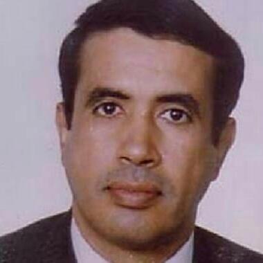 محمد ولد هارون ولد الشيخ سيديا