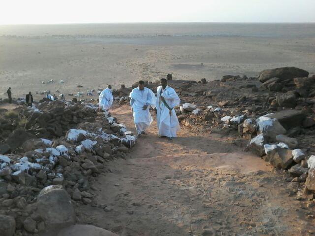 ولد اهل داوود وولد كمب يعاسران الصعود قبل سقوط الثاني ووصول الاول